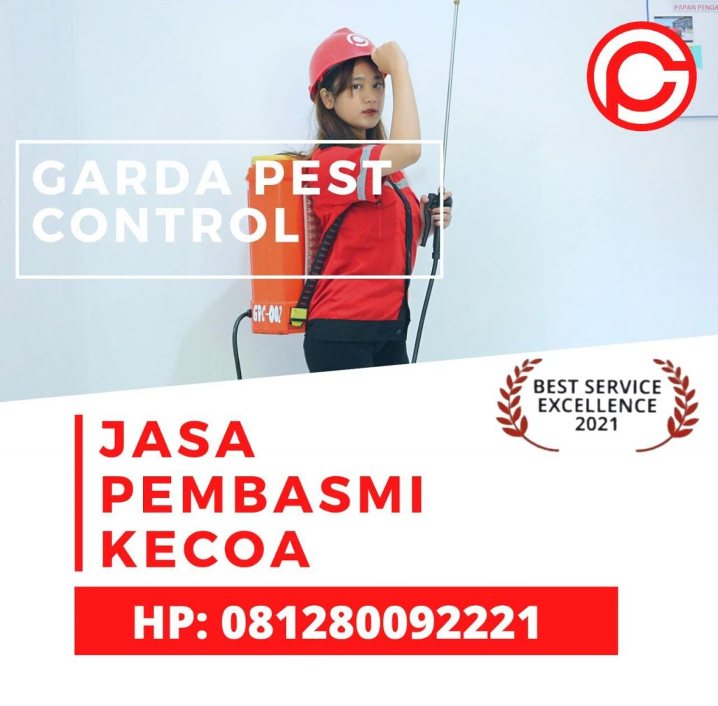 Jasa Pembasmi Kecoa di Bandung